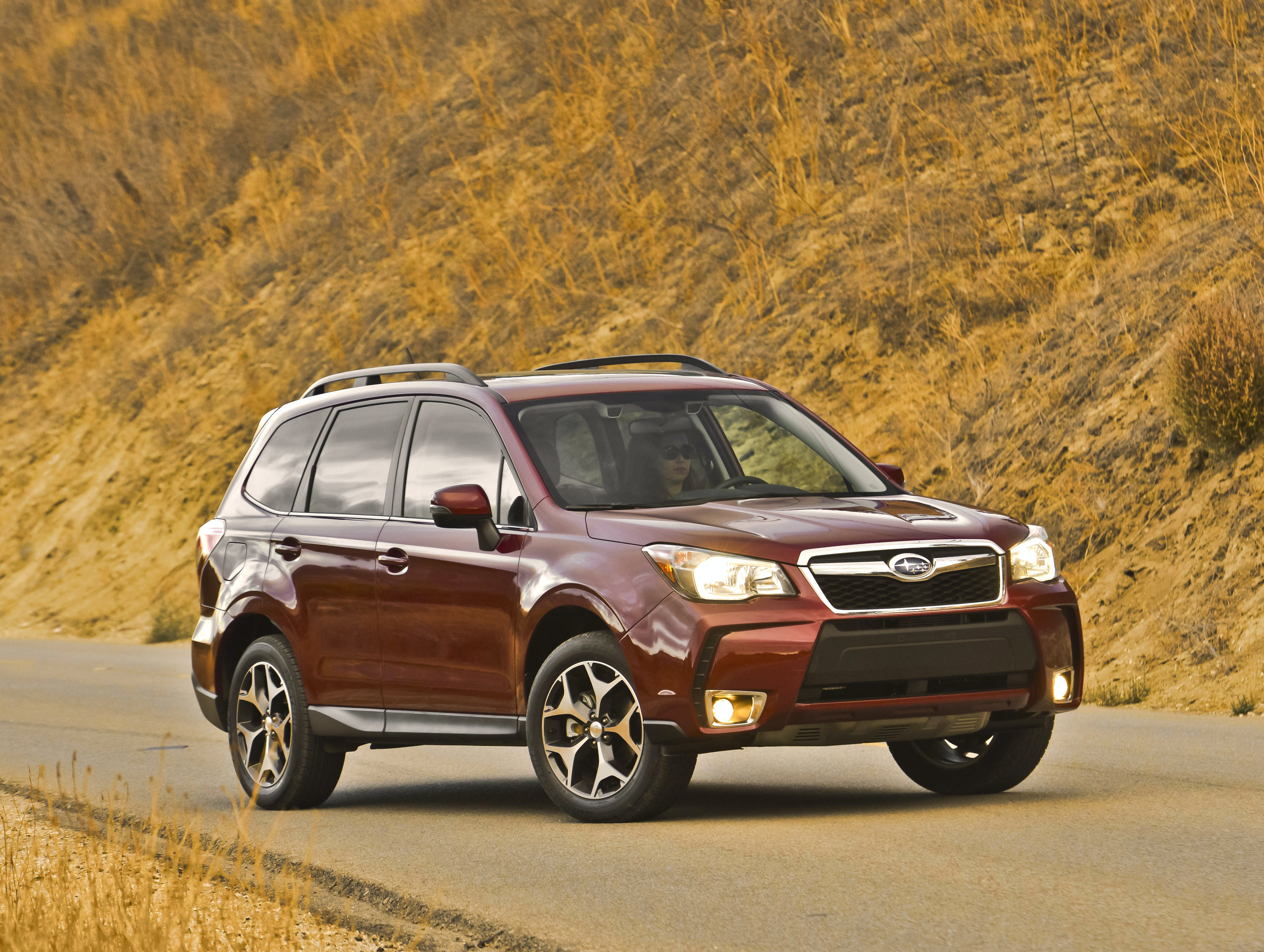 Subaru Forester or Outback: Which Is Better?