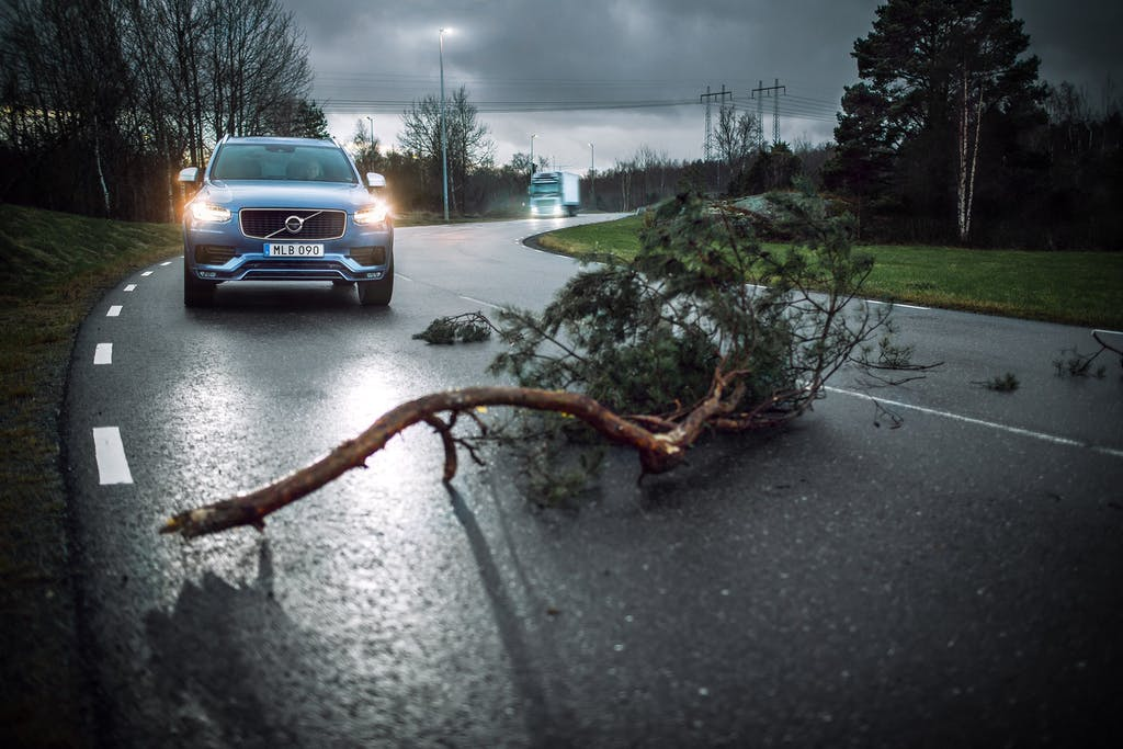 Blue Volvo Car on the road with a Large Fallen Tree Branch Blocking Path
